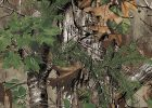 Hunting Camo Plastic Table Covers Roll